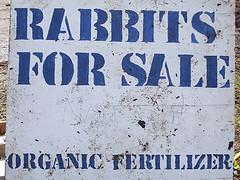 """Rabbit for sale"" signage"
