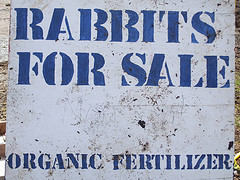 """Rabbit for sale"" signage"